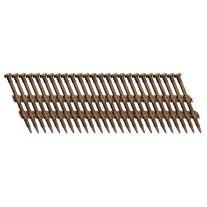 "Fasco SCFP720CTSEGBR 2-1 / 4"" x galvanizado electro-120 Scrail clavo de la tira de cabeza redonda Brown tira de plástico"